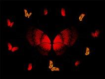 Mooie tropische vlinders vector illustratie