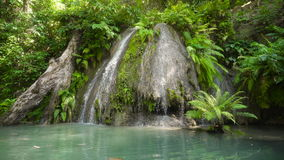 Mooie Tropische Waterval Het eiland van Filippijnen Cebu stock footage