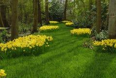 Mooie tuin Royalty-vrije Stock Afbeelding