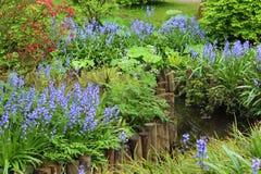 Mooie tuin Stock Foto's