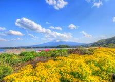 Mooie tuin met grote bergachtergrond Stock Foto