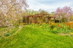 Mooie tuin met kleurrijke bloemen royalty-vrije stock afbeelding
