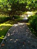 Mooie tuin met schaduw op de weg stock fotografie
