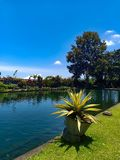 Mooie tuin tegen de blauwe hemel en het meer royalty-vrije stock foto