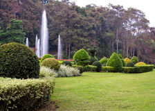 Mooie tuin van het ontwerp de bloemrijke Landschap Royalty-vrije Stock Foto's