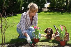 Mooie tuinman Royalty-vrije Stock Afbeelding