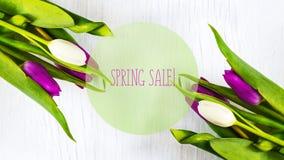 Mooie tulpen op witte boomachtergrond De verkoop van de conceptenlente Royalty-vrije Stock Afbeeldingen