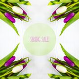 Mooie tulpen op witte boomachtergrond De verkoop van de conceptenlente Royalty-vrije Stock Foto