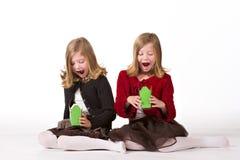 Mooie tweelingmeisjes bij Kerstmis stock afbeeldingen