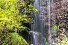 Mooie, unieke, glasheldere kleine waterval in Transsylvanië, Roemenië royalty-vrije stock afbeelding