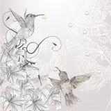 Mooie vectorachtergrond in uitstekende stijl met vogels en stroom Stock Fotografie