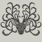 Mooie Vectorillustratie op textuur van hout Royalty-vrije Stock Afbeeldingen