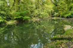 Mooie Venoge-rivier Stock Foto