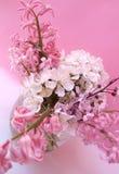 Mooie verse bloemen in vaas Stock Afbeelding