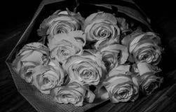 Mooie verse roze rozen royalty-vrije stock foto