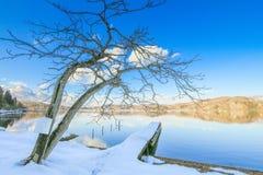 Mooie verse sneeuw in de winter rond het bergenmeer en RT Stock Afbeelding