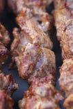 Mooie verse stukken van gerookte vleeskebab die bij de houtskoolgrill wordt gebraden Royalty-vrije Stock Afbeelding