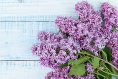 Mooie verse tak van lilac bloesems op een lichtblauwe houten achtergrond Royalty-vrije Stock Afbeelding
