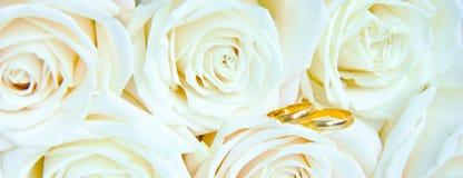 Mooie verse witte rozen met gouden ringen, huwelijksconcept stock afbeeldingen