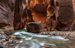 Mooie versmalt landschap in het nationale park van Zion, Utah Stock Afbeelding