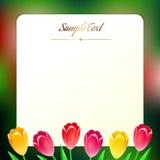 Mooie vierkante greating kaart met de lentebloemen Royalty-vrije Stock Afbeelding