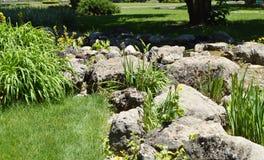Mooie vijver en Kreek met rotsen en bloemen in het Park dit 3 Juni, 2018 de Krim Stock Fotografie