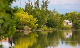 Mooie Vijver met het Wijzen van op Bomen Stock Foto's
