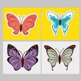 Mooie Vlinder Royalty-vrije Stock Afbeelding