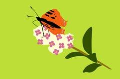 Mooie vlinder royalty-vrije illustratie