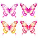 Mooie vlinders Stock Afbeelding