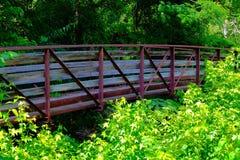 Mooie voetbrug Stock Afbeelding