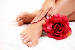 Mooie voeten en handen Stock Foto's