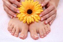 Mooie voeten met perfecte kuuroord Franse spijker stock foto