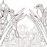 Mooie vogelstekeningen op zwart-wit stock illustratie