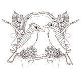 Mooie vogelstekeningen op zwart-wit royalty-vrije illustratie