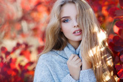 Mooie vrouw in de herfstpark stock afbeeldingen