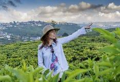 Mooie mooie vrouw in de hoed die zich bij de theeaanplantingen bevinden en richting met vinger richten royalty-vrije stock afbeelding