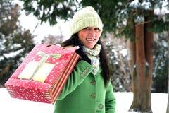 Mooie vrouw in de winter het plaatsen Royalty-vrije Stock Foto's