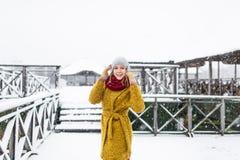 Mooie vrouw in de winterlaag stock afbeelding