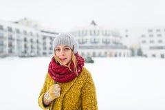 Mooie vrouw in de winterlaag royalty-vrije stock foto