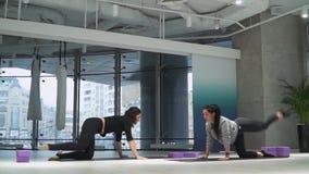 Mooie vrouw die leren hoe te oefeningen in een hangmat voor yoga in studio met haar trainer binnen te doen Atletisch meisje stock videobeelden