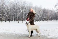 Mooie vrouw die met Witte Zwitserse herdershond lopen in de winter royalty-vrije stock foto's