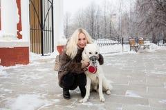 Mooie vrouw die met Witte Zwitserse herdershond lopen in de winter royalty-vrije stock afbeelding