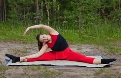 Mooie vrouw die yogaoefeningen in het hout doen stock afbeeldingen