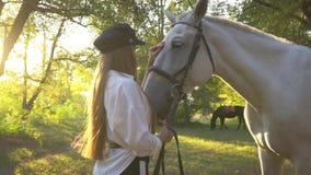 Mooie vrouw in een wit overhemd die de paard` s neus strijken die zich in het park op een zonnige dag bevinden stock footage