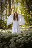 Mooie vrouw in lange witte kleding die zich in een bos bevinden royalty-vrije stock foto