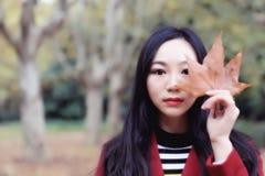 Mooie vrouw met een de herfstachtergrond Royalty-vrije Stock Foto