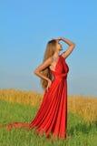 Mooie vrouw op een tarwegebied Stock Foto