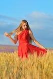 Mooie vrouw op een tarwegebied Stock Afbeelding