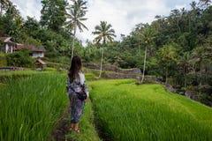 Mooie vrouw op groene padievelden in Bali stock afbeelding